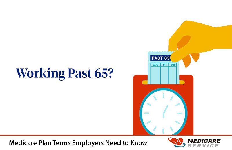 Medicare Plan Terms Employers Need to Know