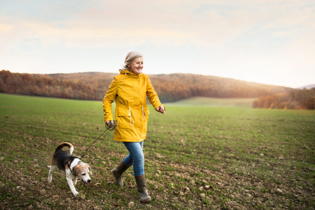 Benefits of Pet Ownership During Retirement